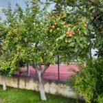 natura di Villa dei Tigli resort in Pietrelcina